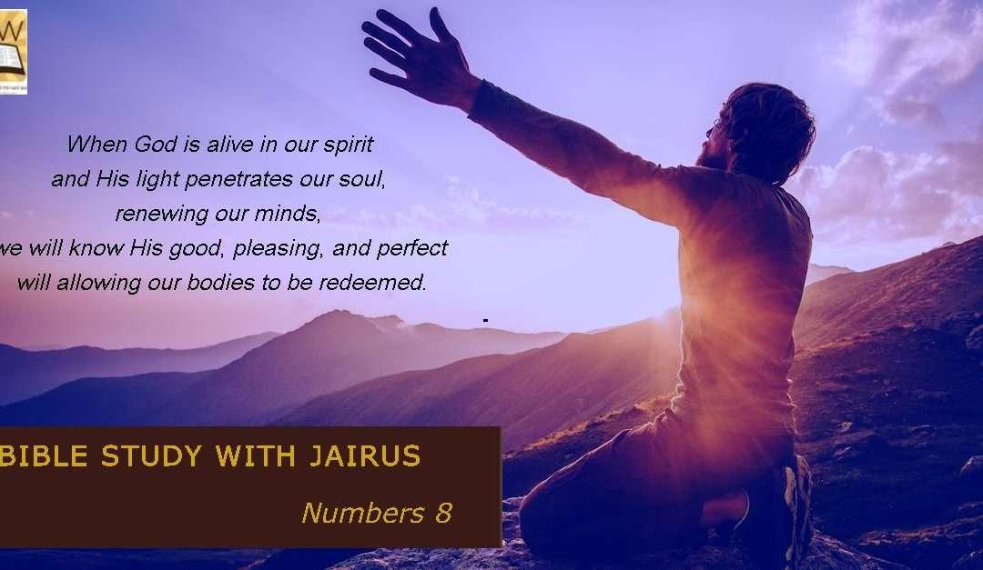 睚鲁的圣经世界-民数记8