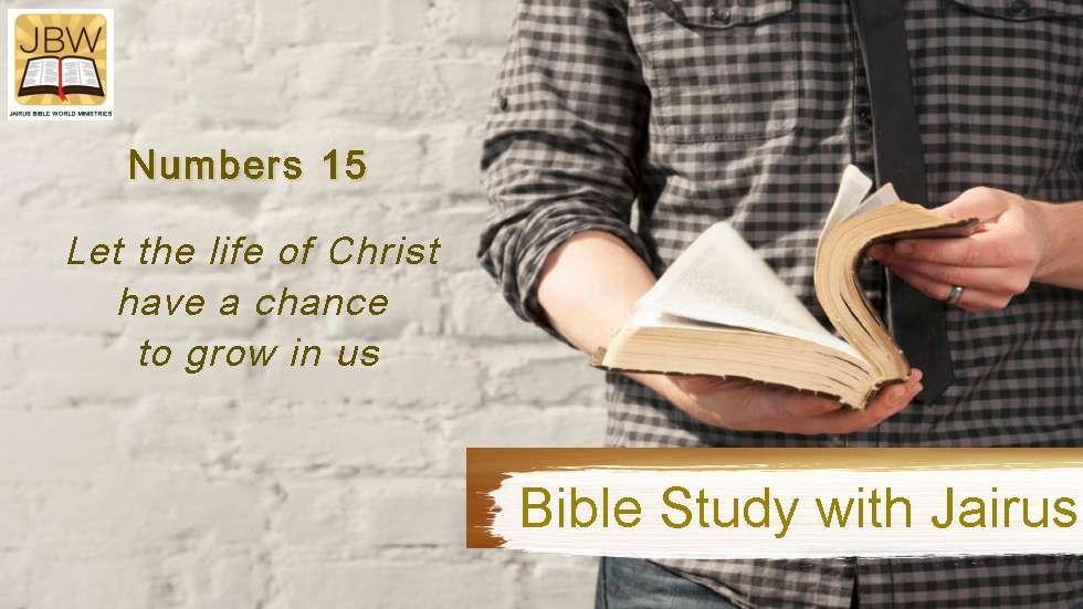 睚鲁的圣经世界-民数记15