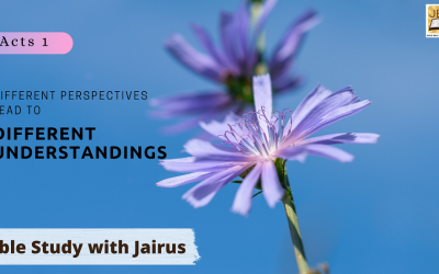Bible Study with Jairus – Acts 1